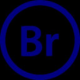 adobe bridge 2 icon