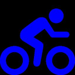 regular biking icon