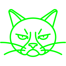 Free Lime Grumpy Cat Icon Download Lime Grumpy Cat Icon