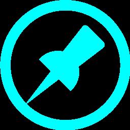 pin 2 icon