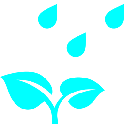 plant under rain icon