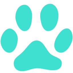 Free Turquoise Cat Icon Download Turquoise Cat Icon