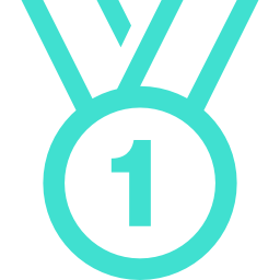 medal 2 icon