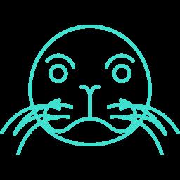 Free Turquoise Sea Lion Icon Download Turquoise Sea Lion Icon