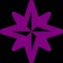 wind rose icon