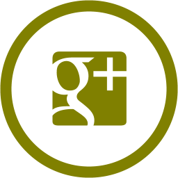 google plus 2 icon