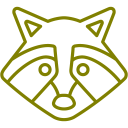 racoon icon