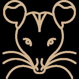 opposum icon