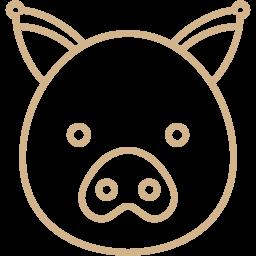pig 2 icon