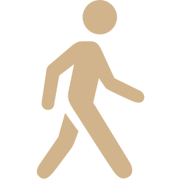 Free Tan Walking Icon Download Tan Walking Icon
