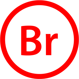 adobe bridge 2 icon