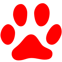 Free Red Cat Icon Download Red Cat Icon