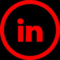 linkedin 2 icon