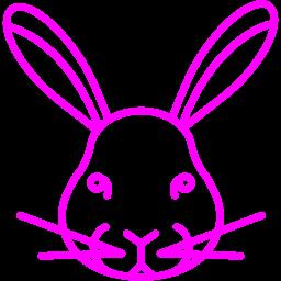 rabbit 2 icon
