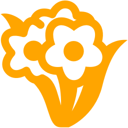 bunch flowers icon