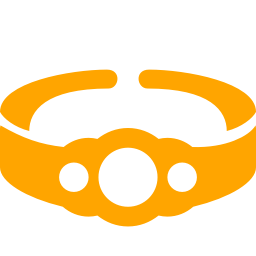 championship belt icon