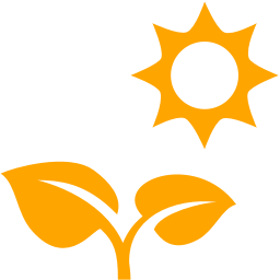 Free Orange Plant Under Sun Icon Download Orange Plant Under Sun Icon