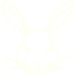 rabbit 2 icon