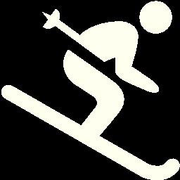 skiing icon