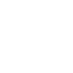 Free White Pizza Icon Download White Pizza Icon